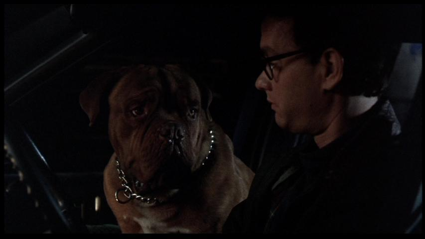 Turner-Hooch-tom-hanks-14480146-853-480